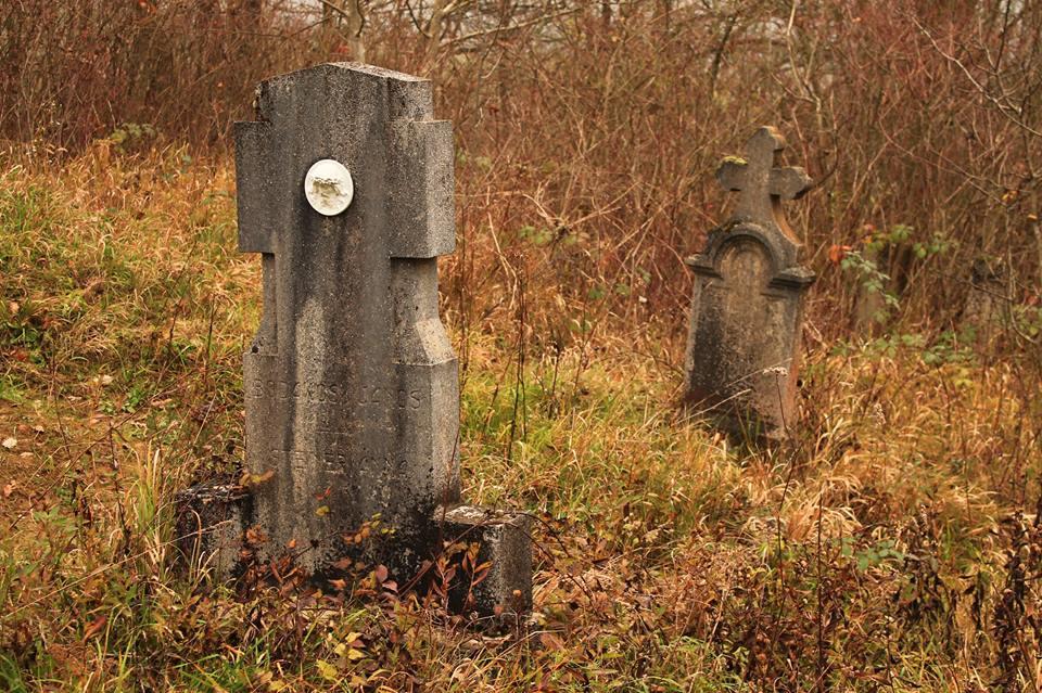 A kihalt falu, Gyűrűfű