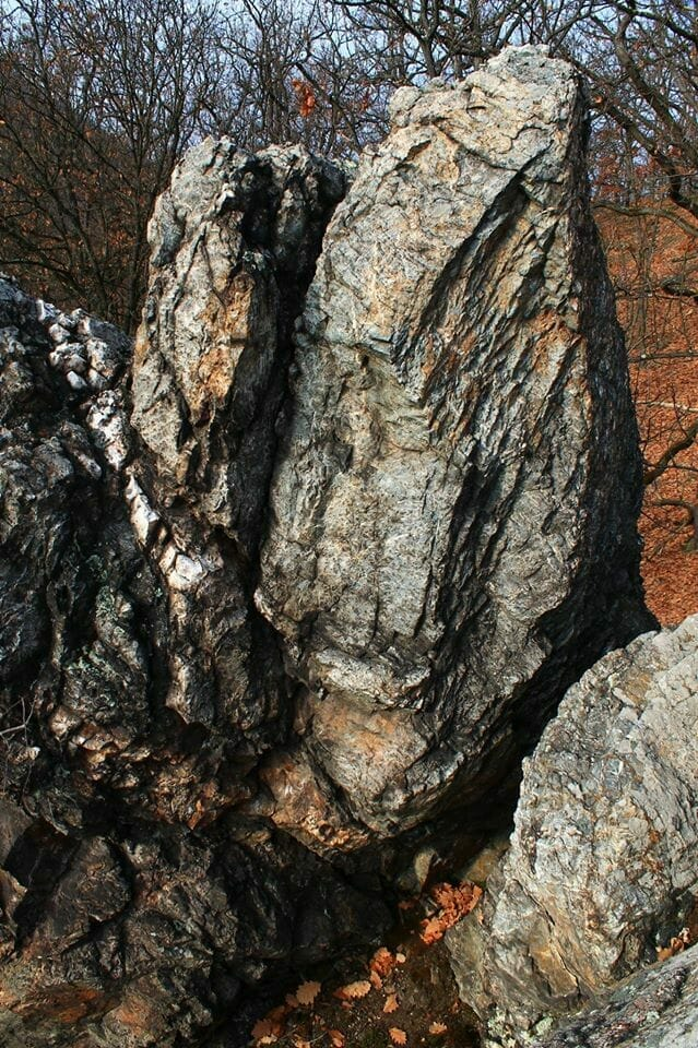 450 millió éves történet az Upponyi-hegységből