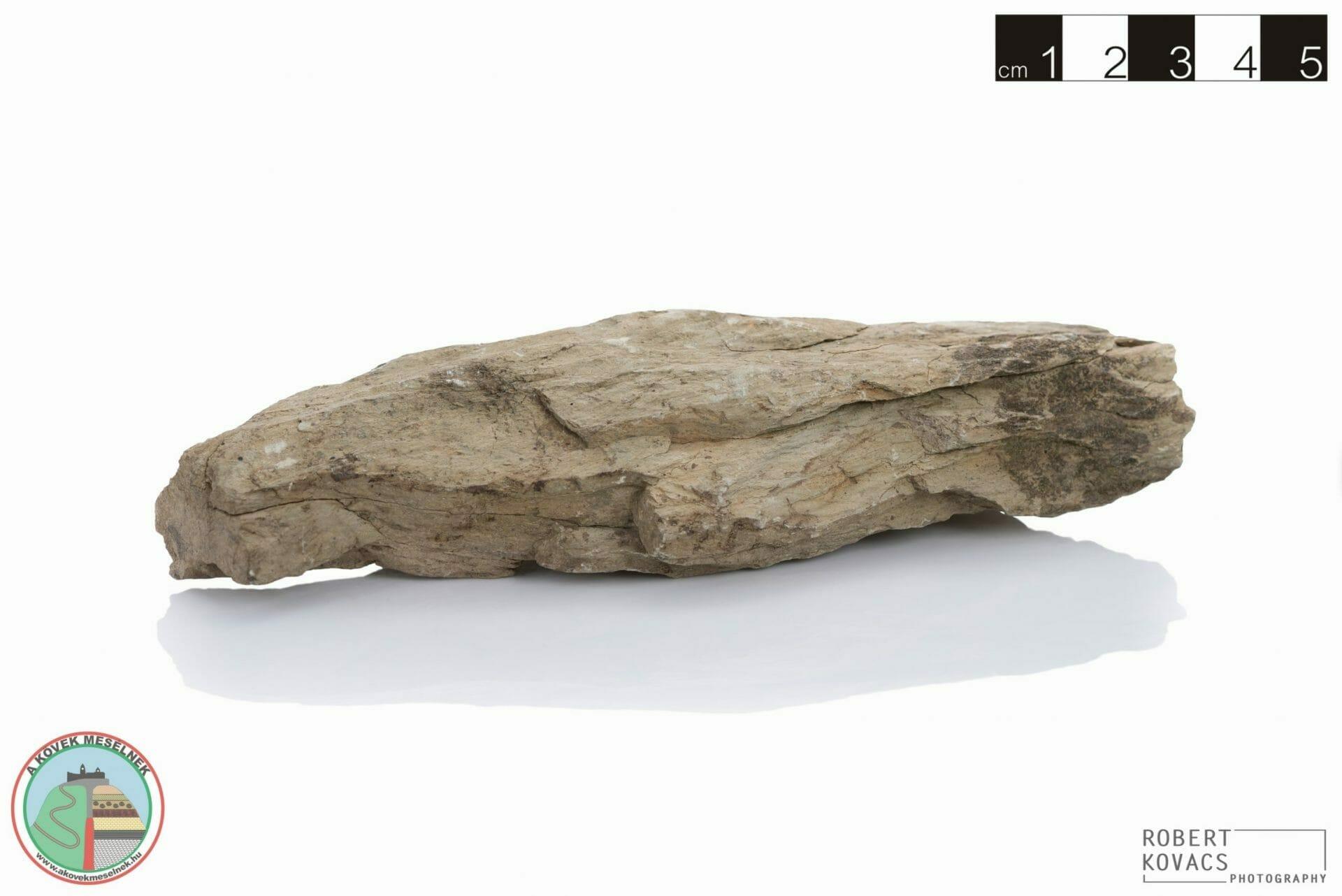 Agyagpala II.