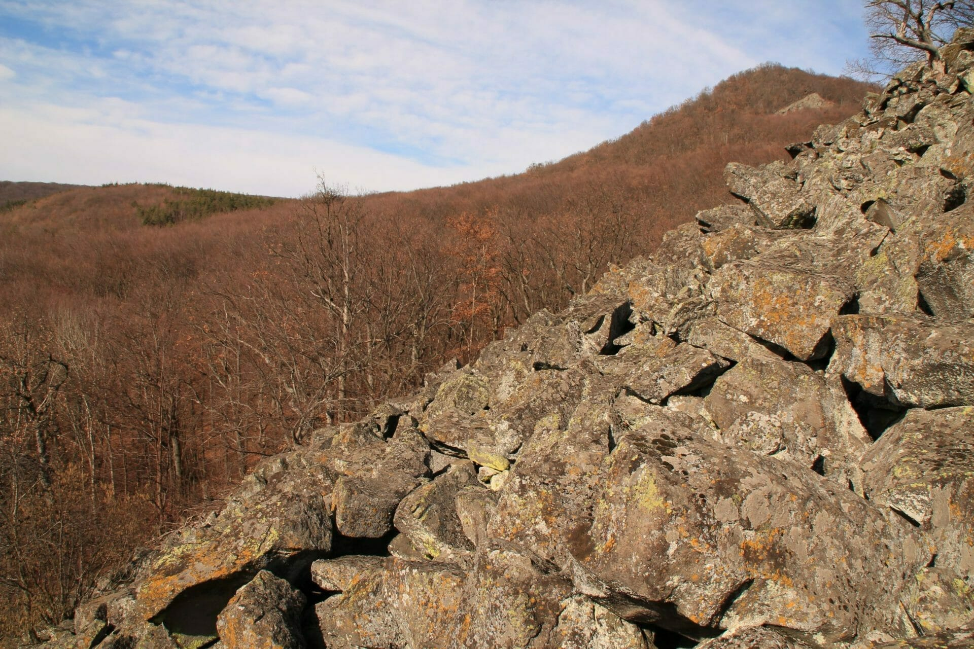 A füzéri Kövecses fagy repesztette kövei