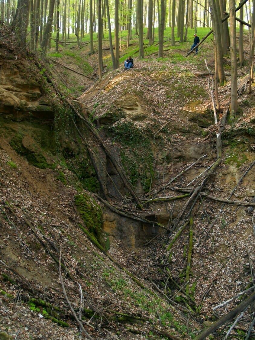 Cseppköves mésztufahasadék a Zselicben