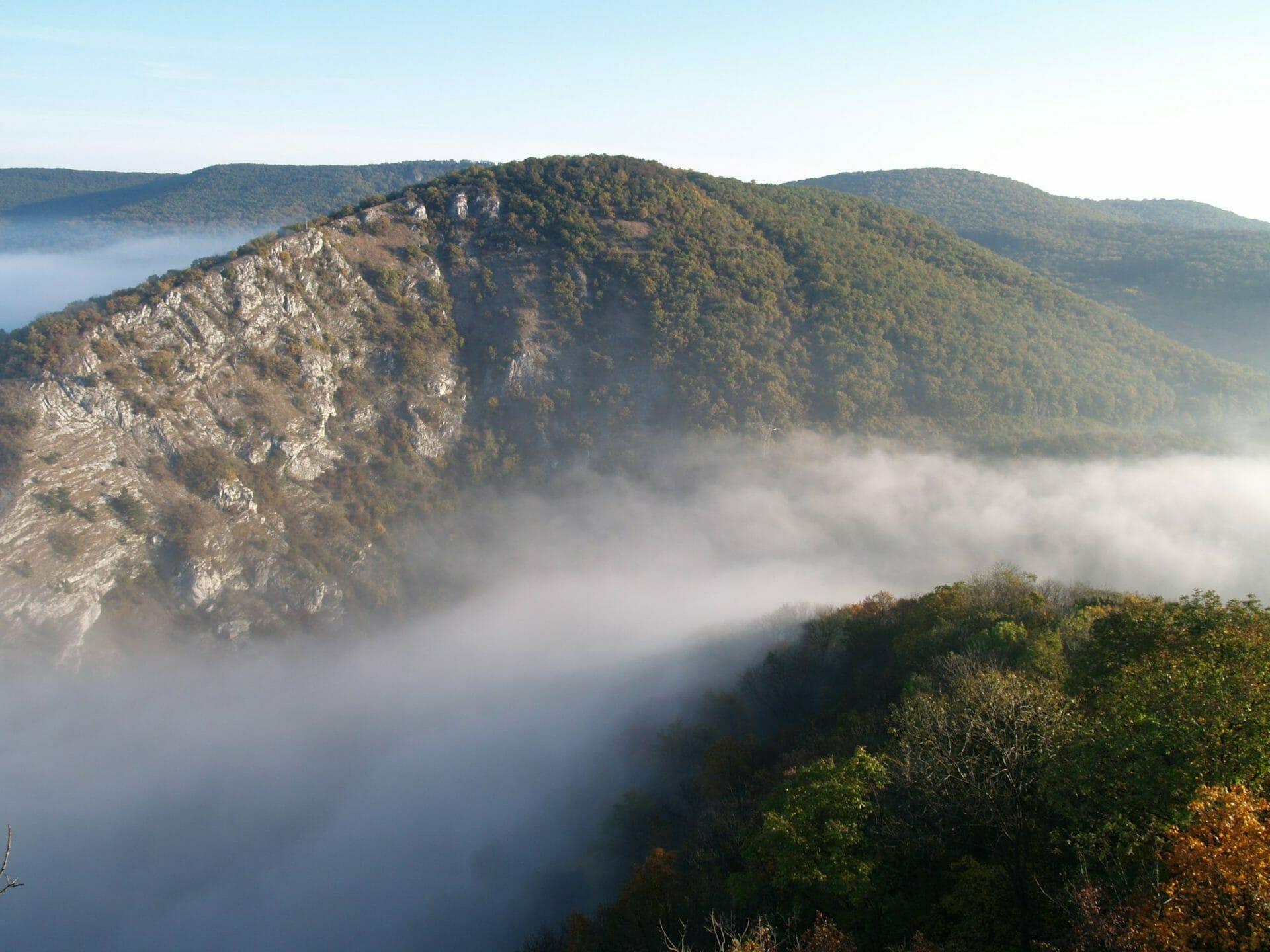 Upponyi-hegység, Bükk
